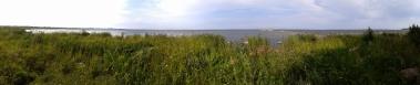 Kalvin rantaa länteen (c) Timo Nuoranen