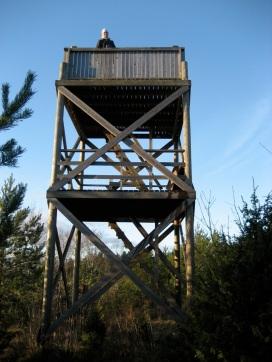 yksi Saunajalahden torneista (c) Pertti Linna