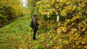 Metsään vie tutkijan tie.. (c) Timo Nuoranen