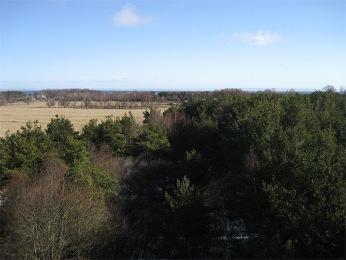Näkymä tornista itään, horisontissa Abruka (oikealla) ja Roomassaare 13km päässä. (c) Sampsa Cairenius