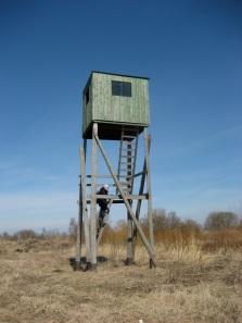 Koilliskulman huonokuntoinen lintutorni (c) Pertti Linna