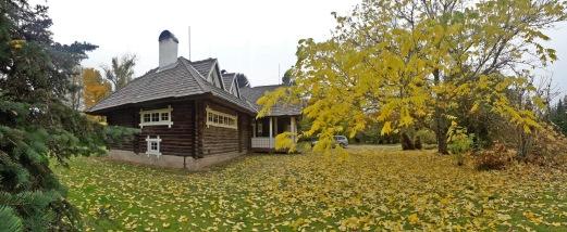 Jahiloss on värikäs alue syksyllä (c) Timo Nuoranen