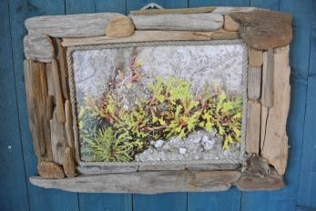 Luonnon taidetta ... (c) Pentti Selin