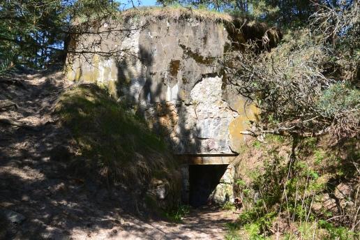 Useita sotien aikaisia bunkkereita (c) Pentti Selin