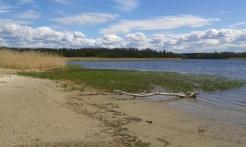 Jõesuu - Ihasalu laht (c) Timo Nuoranen