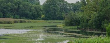 Suurjärv on nimensä muikaisesti suurin kolmesta, mutta järveksi kovin pieni (c) Timo Nuoranen