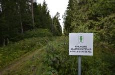 Suojelualueen eteläraja (c) Timo Nuoranen