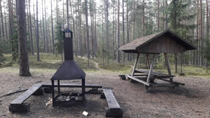 Tulipaikka Kiipsaare (c) Timo Nuoranen