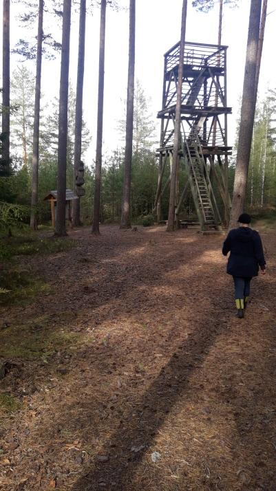 Korkea torni kurottaa suolle (c) Timo Nuoranen