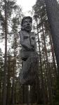Metsänneito (c) Timo Nuoranen