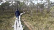 Pitkospuut ovat paikoin huonossa kunnossa (c) Timo Nuoranen