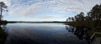 Suojärvi, jossa myös uimapaikka (c) Timo Nuoranen